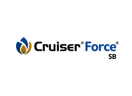 Zuckerrüben Crusier Force SB